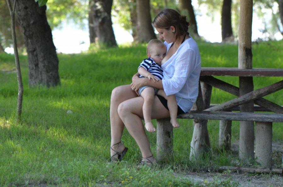 Pet načela o dojenju