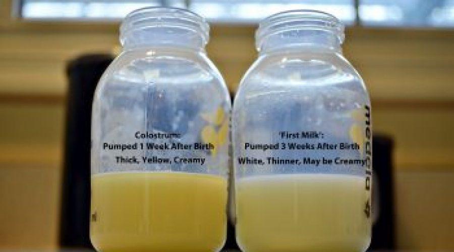 Kolostrum ili prvo mleko